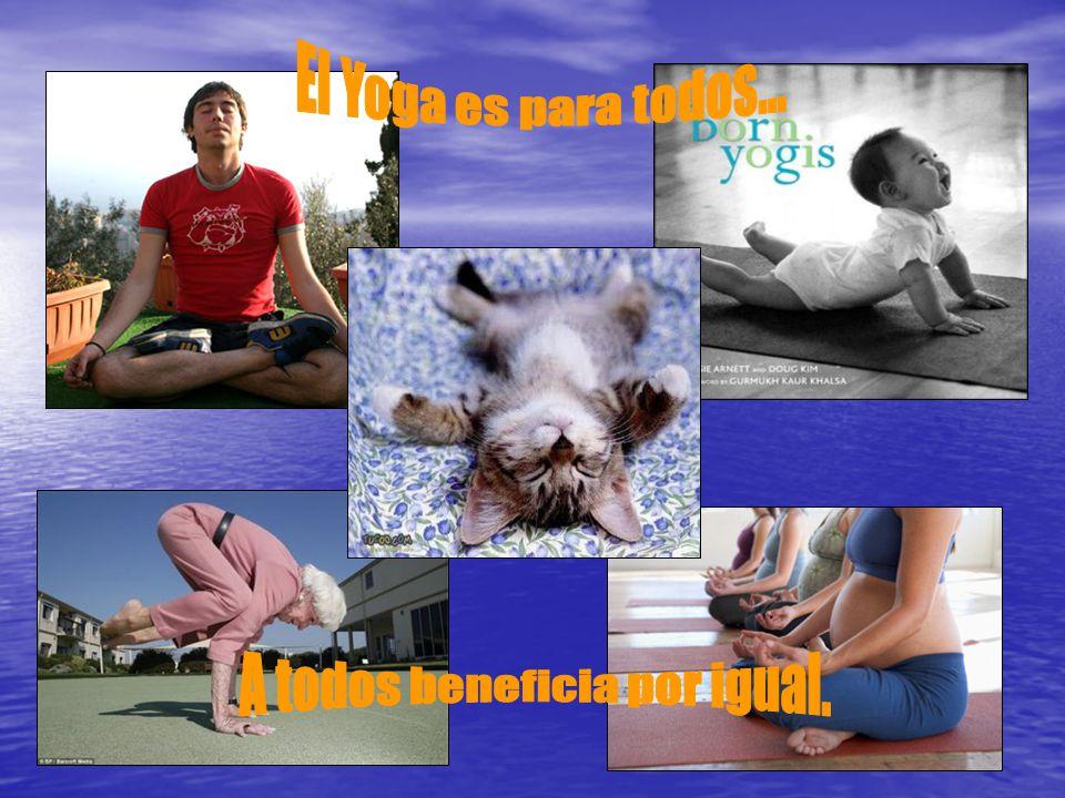 La mente es maravillosamente flexible y responde al cultivo tal como lo haría un terreno fértil… Valor Terapéutico Su simetría perfecta da al cuerpo armonía interior.