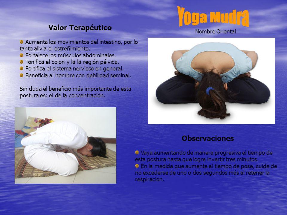 Valor Terapéutico Aumenta los movimientos del intestino, por lo tanto alivia el estreñimiento.
