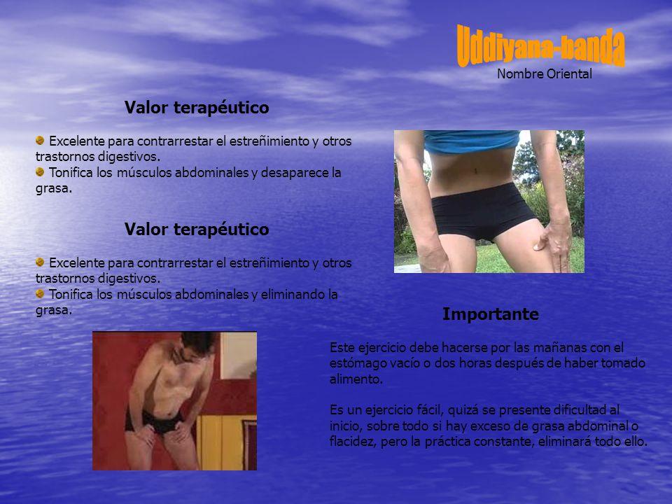 Valor terapéutico Excelente para contrarrestar el estreñimiento y otros trastornos digestivos.