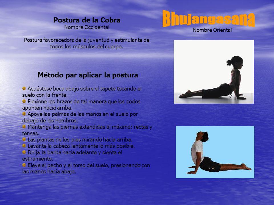 Nombre Oriental Postura de la Cobra Nombre Occidental Postura favorecedora de la juventud y estimulante de todos los músculos del cuerpo.