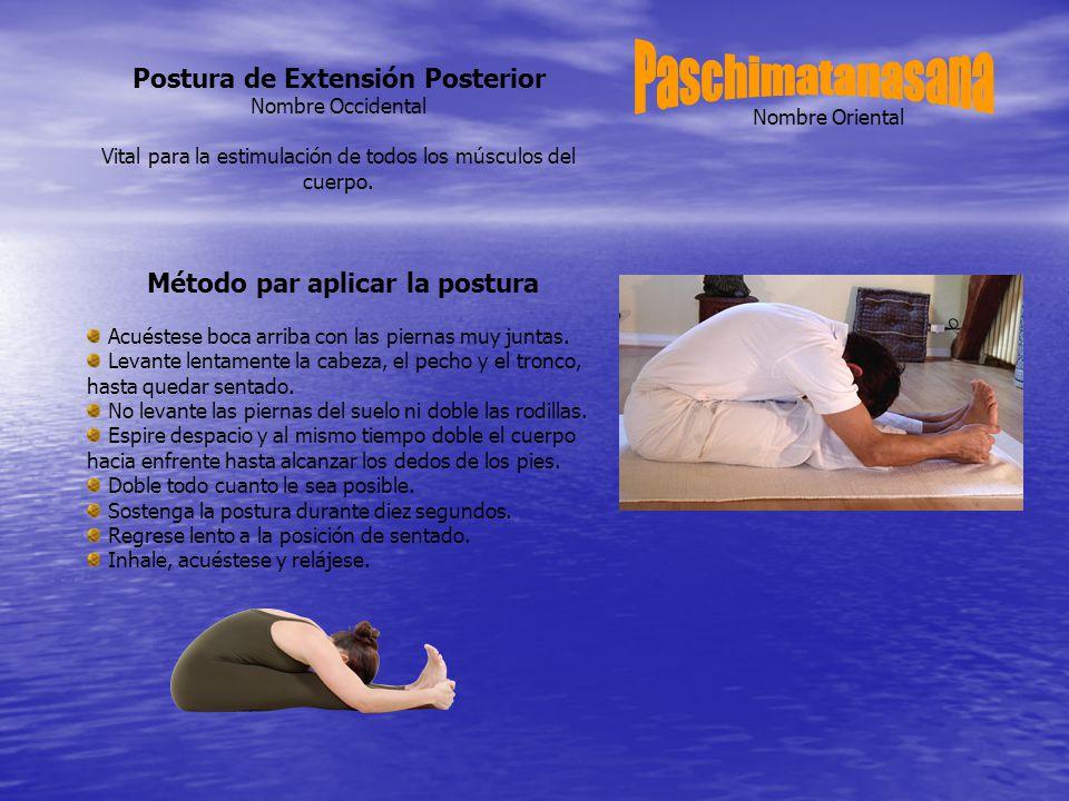 Nombre Oriental Postura de Extensión Posterior Nombre Occidental Vital para la estimulación de todos los músculos del cuerpo.