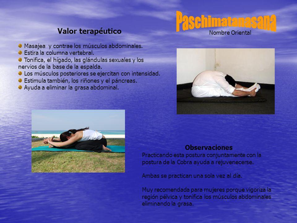Nombre Oriental Valor terapéutico Masajea y contrae los músculos abdominales.