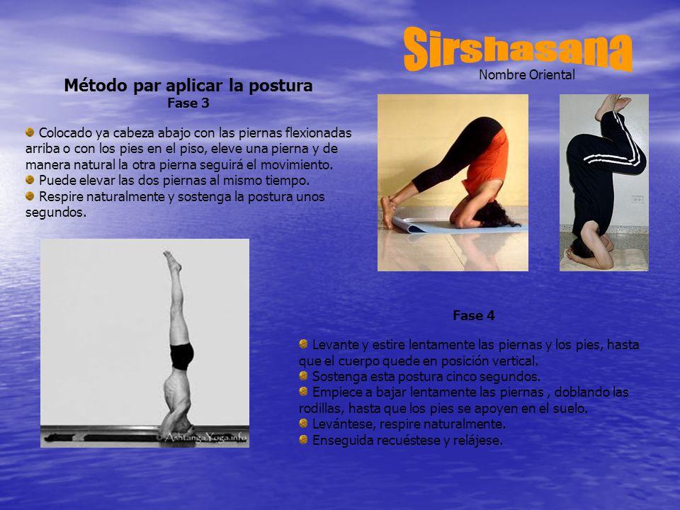 Nombre Oriental Método par aplicar la postura Fase 3 Colocado ya cabeza abajo con las piernas flexionadas arriba o con los pies en el piso, eleve una pierna y de manera natural la otra pierna seguirá el movimiento.
