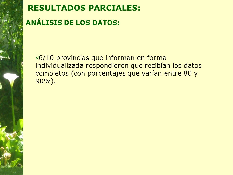 6/10 provincias que informan en forma individualizada respondieron que recibían los datos completos (con porcentajes que varían entre 80 y 90%).