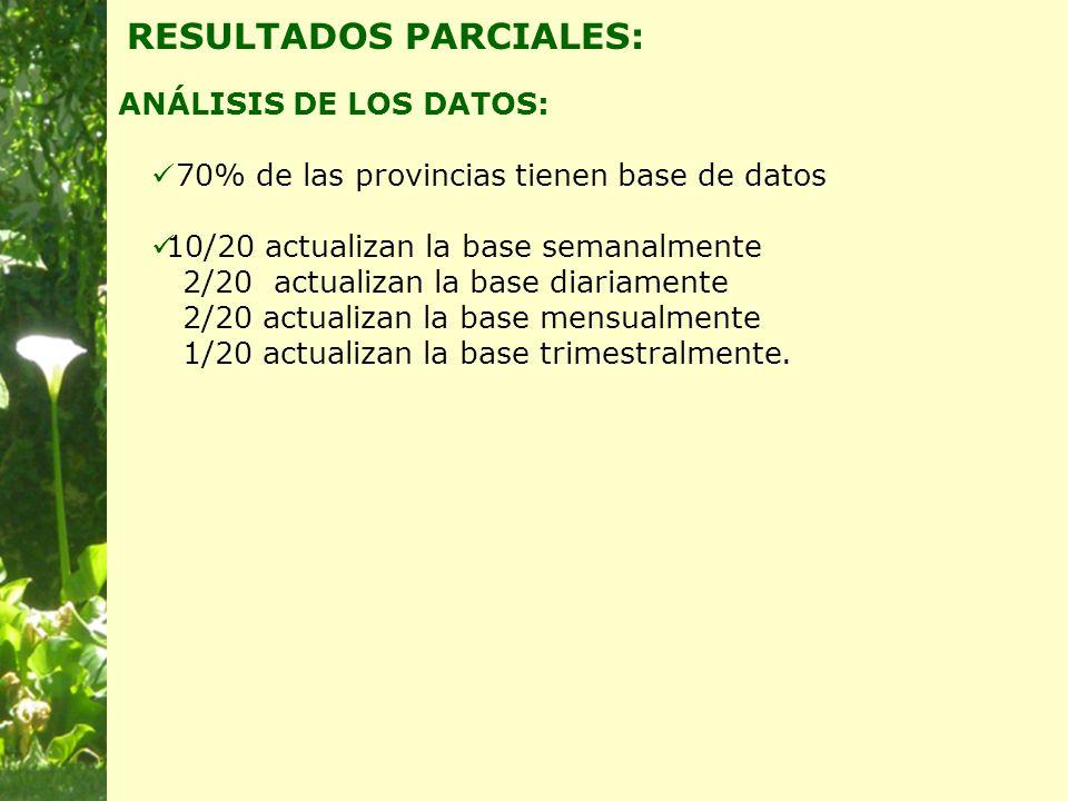 ANÁLISIS DE LOS DATOS: RESULTADOS PARCIALES: 70% de las provincias tienen base de datos 10/20 actualizan la base semanalmente 2/20 actualizan la base diariamente 2/20 actualizan la base mensualmente 1/20 actualizan la base trimestralmente.