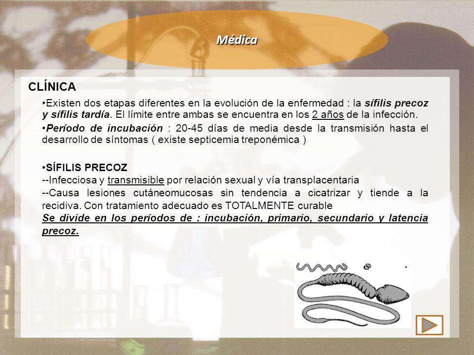 Médica CLÍNICA PERÍODO PRIMARIO Aparece el chancro solitario e indoloro Dura de 10-14 días curando en 6 semanas SÍFILIS PRECOZ