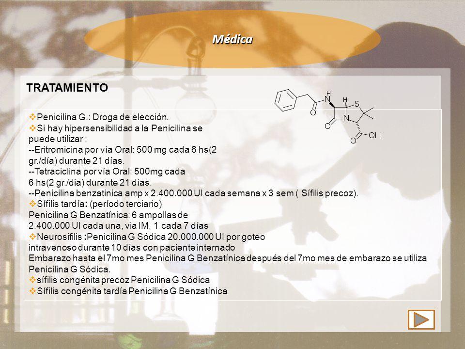 Médica TRATAMIENTO  Penicilina G.: Droga de elección.