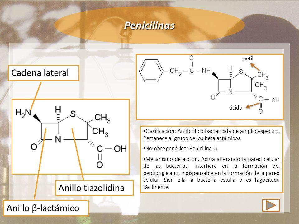 Penicilinas Anillo tiazolidina Anillo β-lactámico Cadena lateral Clasificación: Antibiótico bactericida de amplio espectro.