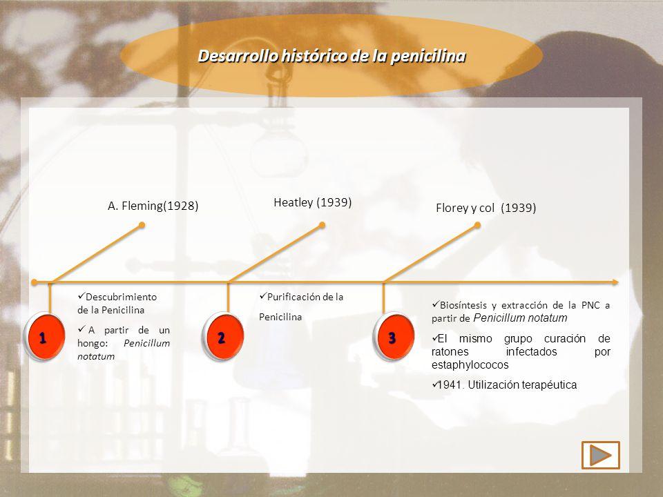Desarrollo histórico de la penicilina A.