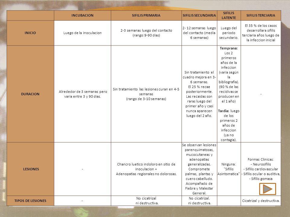 Etapas de la sífilis INCUBACIONSIFILIS PRIMARIASIFILIS SECUNDARIA SIFILIS LATENTE SIFILIS TERCIARIA INICIOLuego de la inoculacion 2-3 semanas luego del contacto (rango:9-90 dias) 2- 12 semanas luego del contacto (media 6 semanas) Luego del periodo secundario.