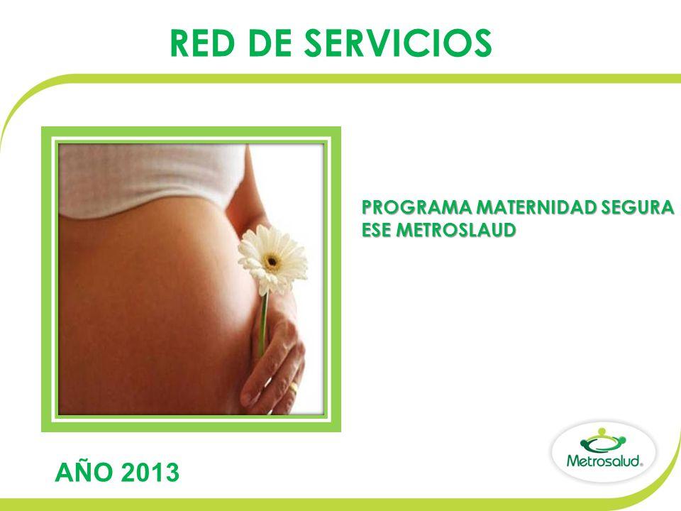 RED DE SERVICIOS AÑO 2013 PROGRAMA MATERNIDAD SEGURA ESE METROSLAUD