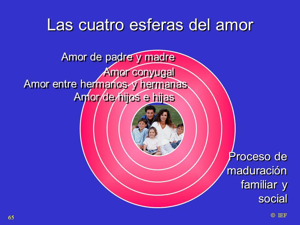 Las cuatro esferas del amor  IEF 65 Amor de padre y madre Amor entre hermanos y hermanas Amor de hijos e hijas Amor conyugal Proceso de maduración familiar y social