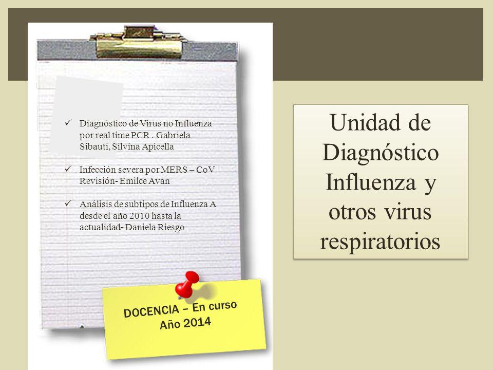 Diagnóstico de Virus no Influenza por real time PCR.