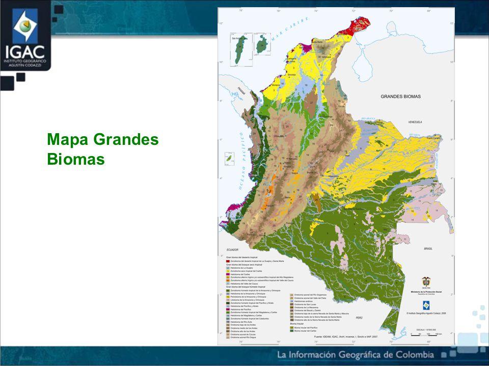 Mapa Grandes Biomas