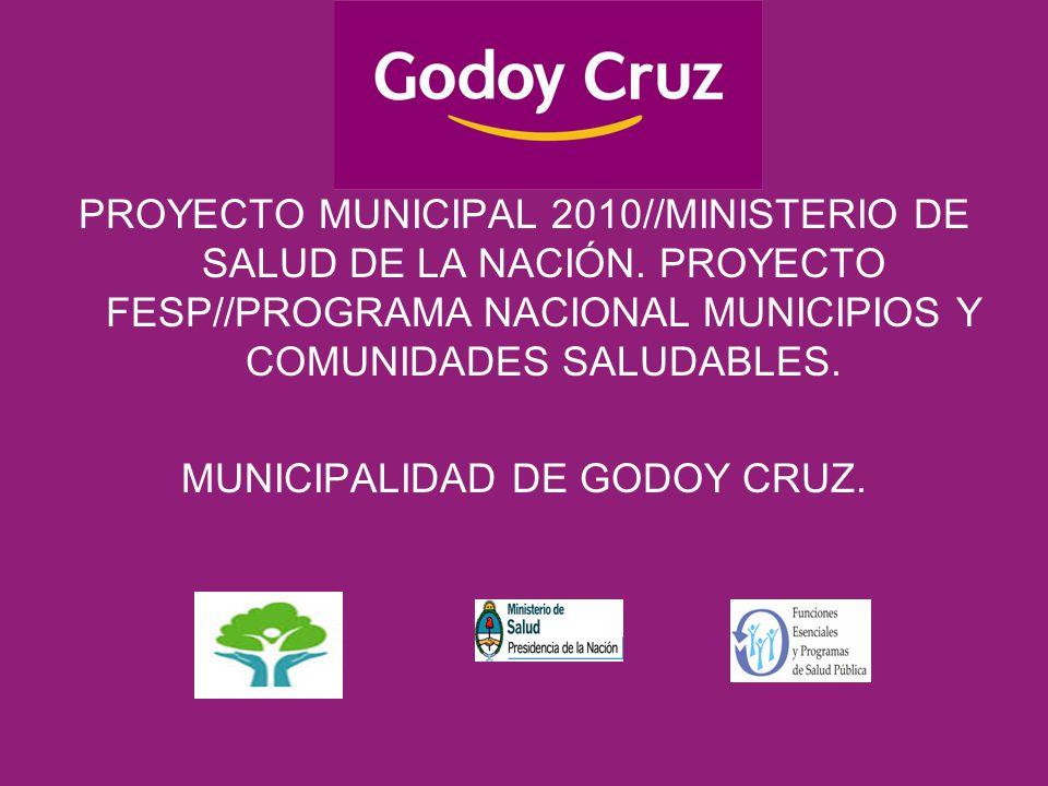 PROYECTO MUNICIPAL 2010//MINISTERIO DE SALUD DE LA NACIÓN.