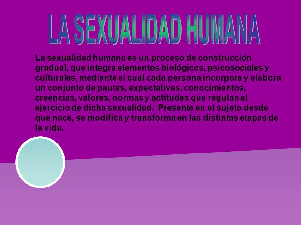 La sexualidad humana es un proceso de construcción gradual, que integra elementos biológicos, psicosociales y culturales, mediante el cual cada persona incorpora y elabora un conjunto de pautas, expectativas, conocimientos, creencias, valores, normas y actitudes que regulan el ejercicio de dicha sexualidad.