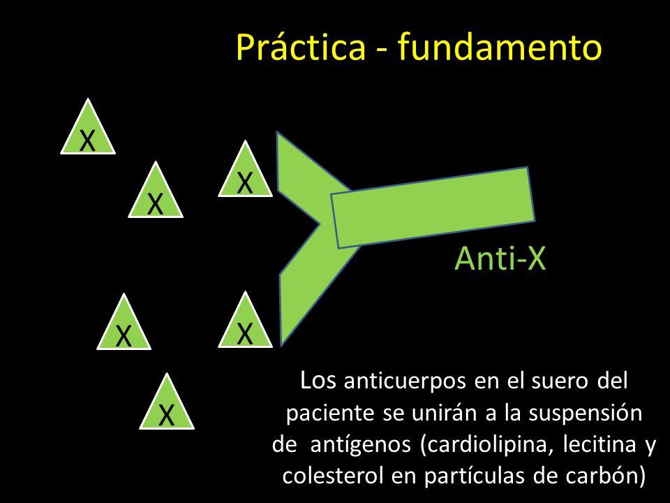 Práctica - fundamento Los anticuerpos en el suero del paciente se unirán a la suspensión de antígenos (cardiolipina, lecitina y colesterol en partículas de carbón) X X X X X X Anti-X