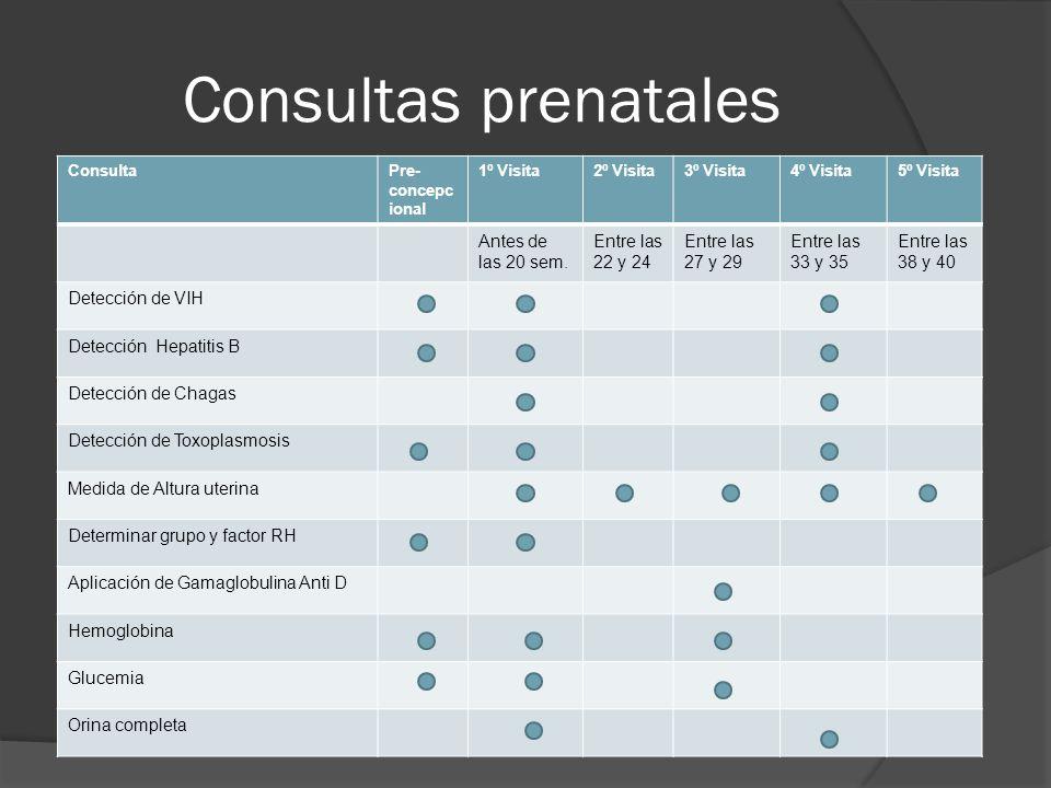 Consultas prenatales ConsultaPre- concepc ional 1º Visita2º Visita3º Visita4º Visita5º Visita Antes de las 20 sem.