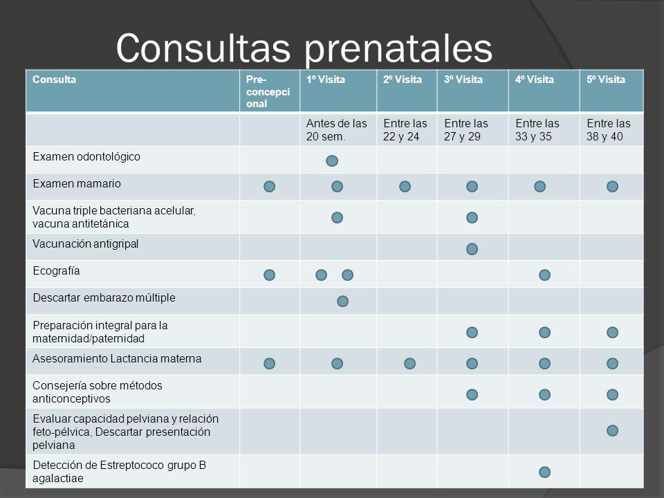 Consultas prenatales ConsultaPre- concepci onal 1º Visita2º Visita3º Visita4º Visita5º Visita Antes de las 20 sem.