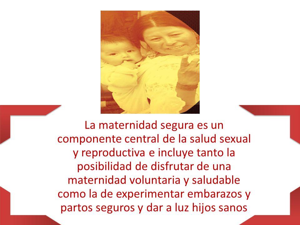 La maternidad segura es un componente central de la salud sexual y reproductiva e incluye tanto la posibilidad de disfrutar de una maternidad voluntaria y saludable como la de experimentar embarazos y partos seguros y dar a luz hijos sanos