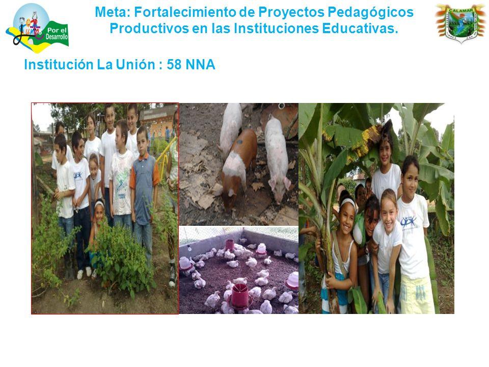Meta: Fortalecimiento de Proyectos Pedagógicos Productivos en las Instituciones Educativas.