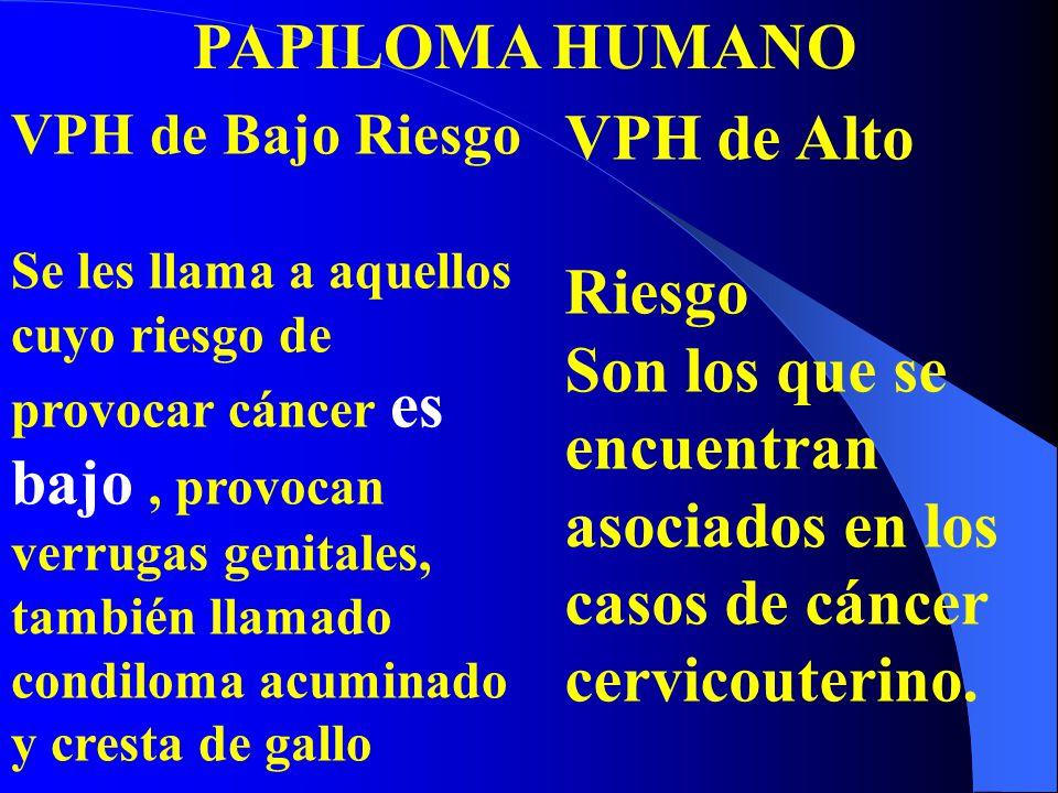 PAPILOMA HUMANO VPH de Bajo Riesgo Se les llama a aquellos cuyo riesgo de provocar cáncer es bajo, provocan verrugas genitales, también llamado condil