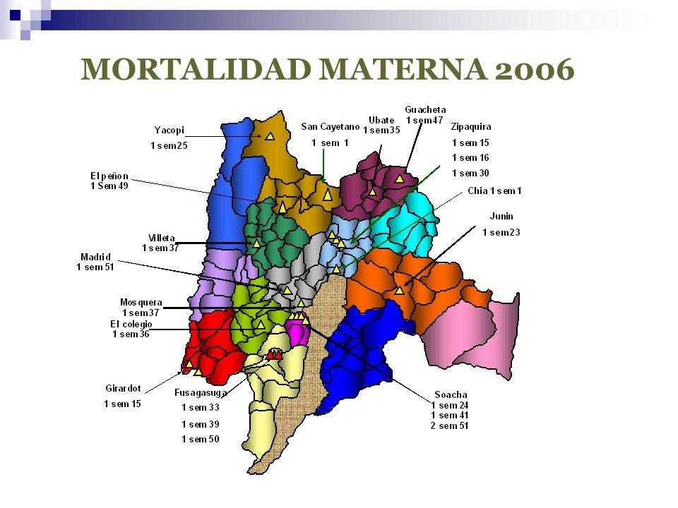MORTALIDAD MATERNA 2006