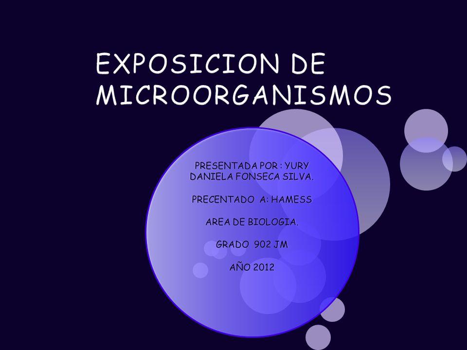 PRESENTADA POR : YURY DANIELA FONSECA SILVA. PRECENTADO A: HAMESS AREA DE BIOLOGIA.