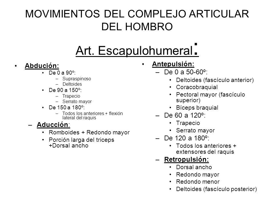 MOVIMIENTOS DEL COMPLEJO ARTICULAR DEL HOMBRO Art.