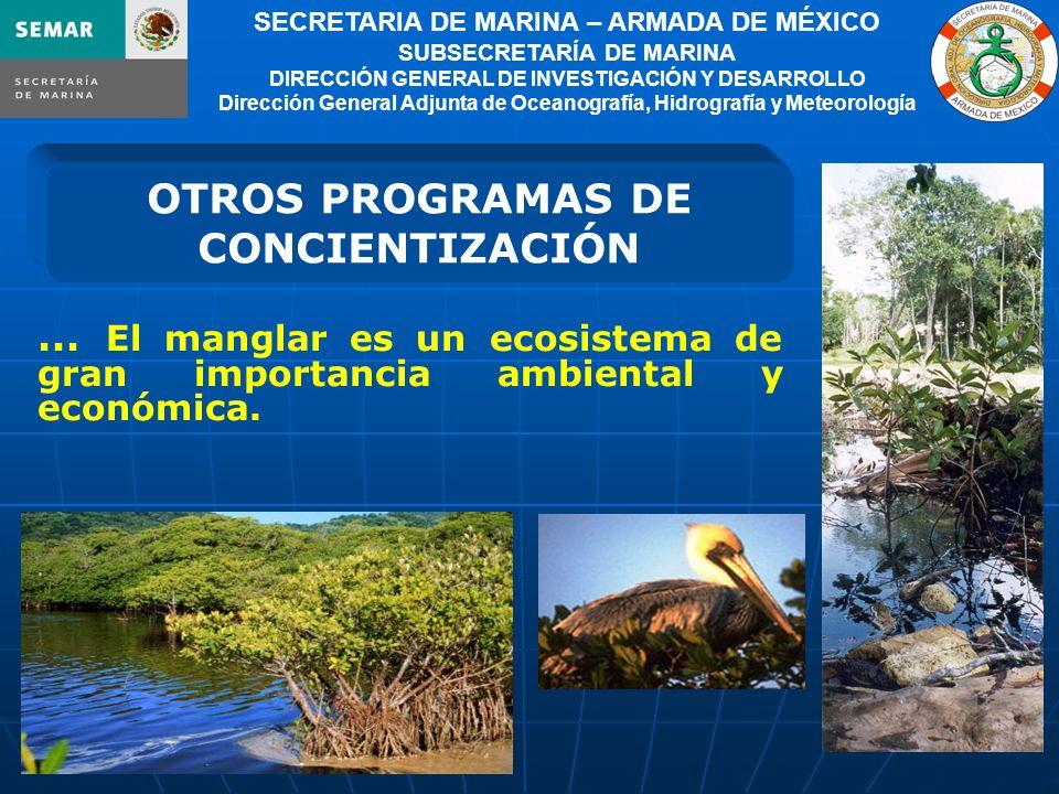 11 SECRETARIA DE MARINA – ARMADA DE MÉXICO SUBSECRETARÍA DE MARINA DIRECCIÓN GENERAL DE INVESTIGACIÓN Y DESARROLLO Dirección General Adjunta de Oceanografía, Hidrografía y Meteorología … El manglar es un ecosistema de gran importancia ambiental y económica.