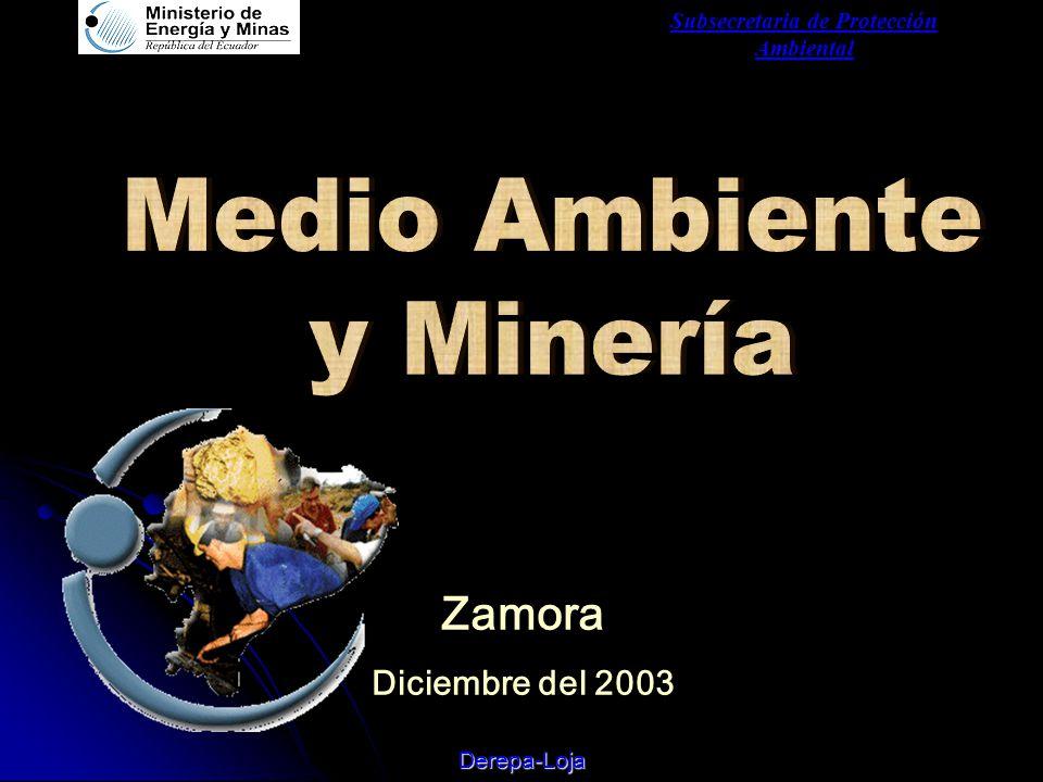 Subsecretaria de Protección Ambiental Derepa-Loja Zamora Diciembre del 2003