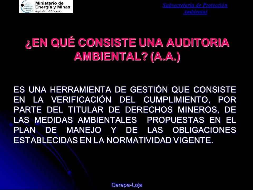 Subsecretaria de Protección Ambiental Derepa-Loja ¿EN QUÉ CONSISTE UNA AUDITORIA AMBIENTAL.