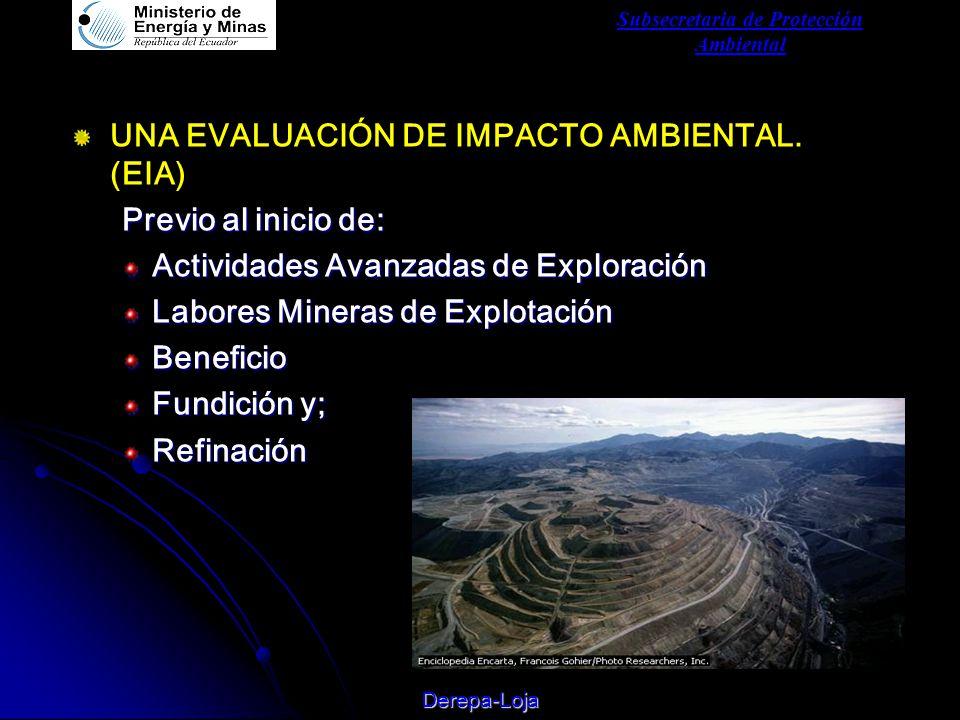 Subsecretaria de Protección Ambiental Derepa-Loja UNA EVALUACIÓN DE IMPACTO AMBIENTAL.