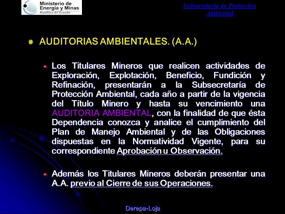 Subsecretaria de Protección Ambiental Derepa-Loja AUDITORIAS AMBIENTALES.