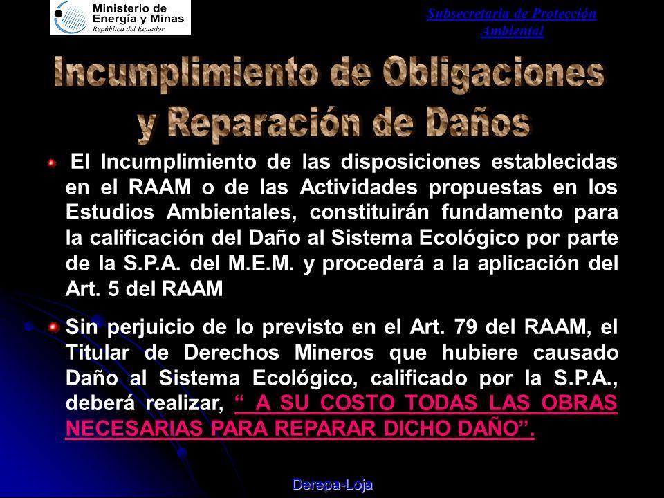 Subsecretaria de Protección Ambiental Derepa-Loja El Incumplimiento de las disposiciones establecidas en el RAAM o de las Actividades propuestas en los Estudios Ambientales, constituirán fundamento para la calificación del Daño al Sistema Ecológico por parte de la S.P.A.
