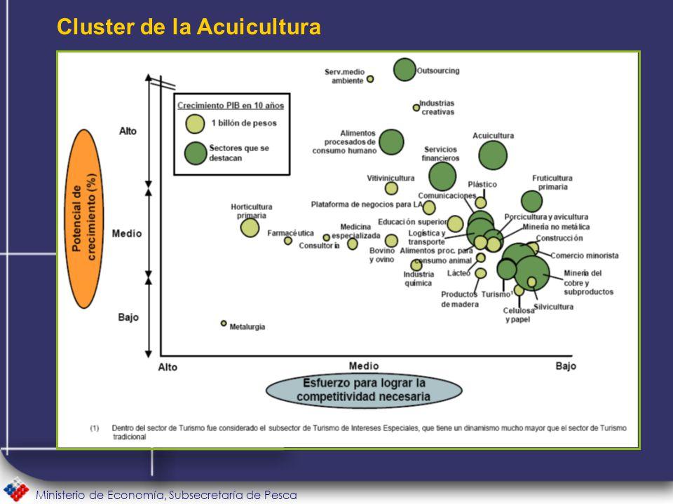 Ministerio de Economía, Subsecretaría de Pesca Cluster de la Acuicultura