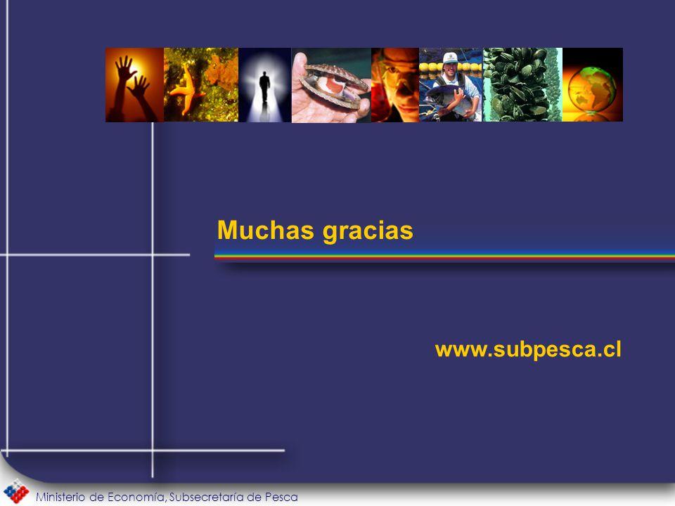Ministerio de Economía, Subsecretaría de Pesca Muchas gracias www.subpesca.cl