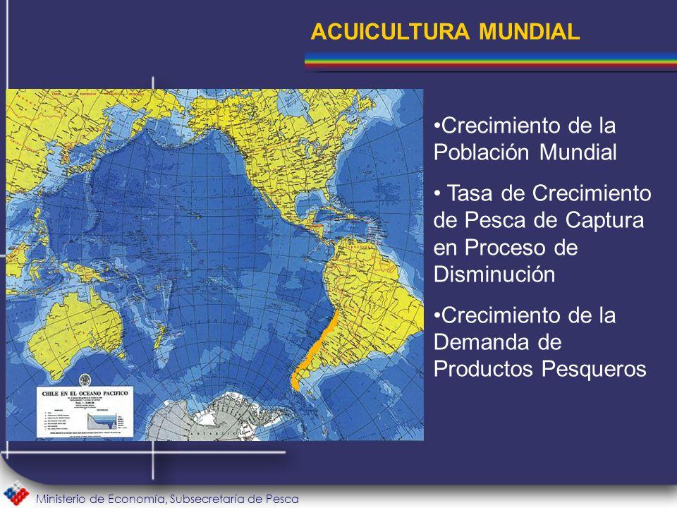 Ministerio de Economía, Subsecretaría de Pesca Crecimiento de la Población Mundial Tasa de Crecimiento de Pesca de Captura en Proceso de Disminución Crecimiento de la Demanda de Productos Pesqueros ACUICULTURA MUNDIAL