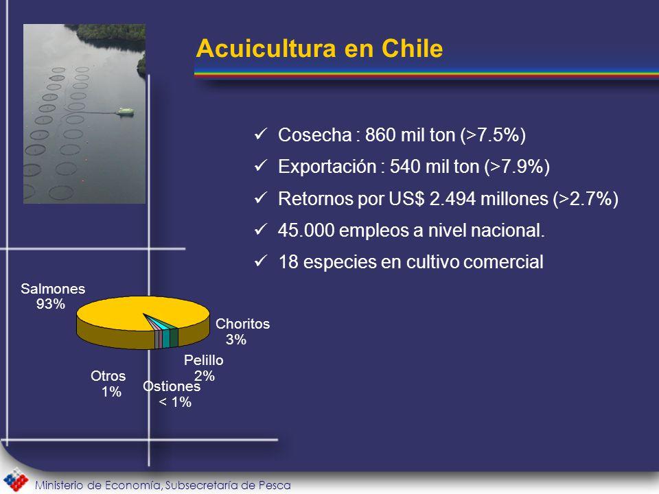 Ministerio de Economía, Subsecretaría de Pesca Cosecha : 860 mil ton (>7.5%) Exportación : 540 mil ton (>7.9%) Retornos por US$ 2.494 millones (>2.7%) 45.000 empleos a nivel nacional.