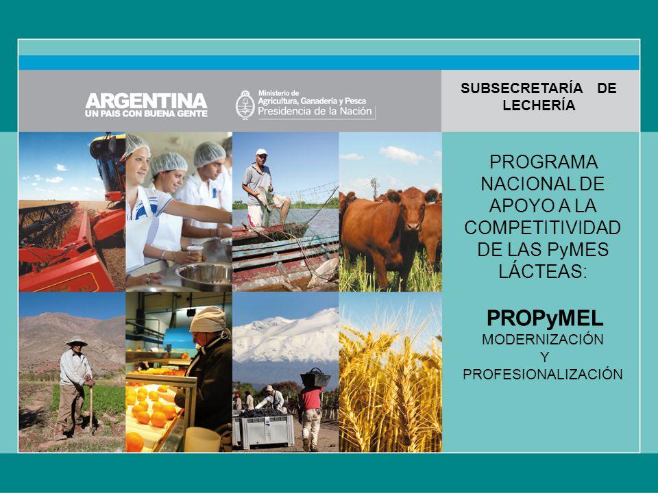 PROGRAMA NACIONAL DE APOYO A LA COMPETITIVIDAD DE LAS PyMES LÁCTEAS: PROPyMEL MODERNIZACIÓN Y PROFESIONALIZACIÓN SUBSECRETARÍA DE LECHERÍA