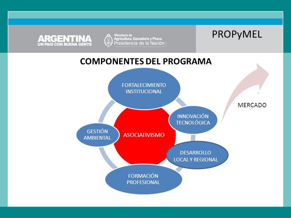 PROPyMEL COMPONENTES DEL PROGRAMA ASOCIATIVISMO FORTALECIMIENTO INSTITUCIONAL INNOVACIÓN TECNOLÓGICA FORMACIÓN PROFESIONAL GESTIÓN AMBIENTAL MERCADO DESARROLLO LOCAL Y REGIONAL