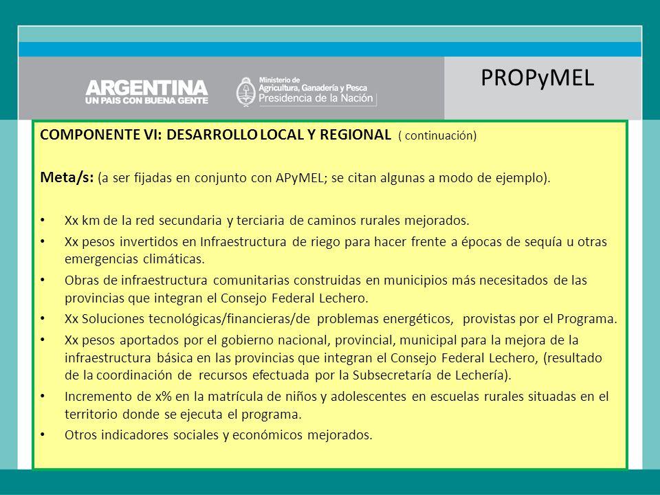 PROPyMEL COMPONENTE VI: DESARROLLO LOCAL Y REGIONAL ( continuación) Meta/s: (a ser fijadas en conjunto con APyMEL; se citan algunas a modo de ejemplo).