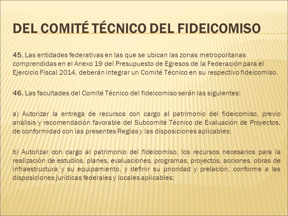 DEL COMITÉ TÉCNICO DEL FIDEICOMISO 45.