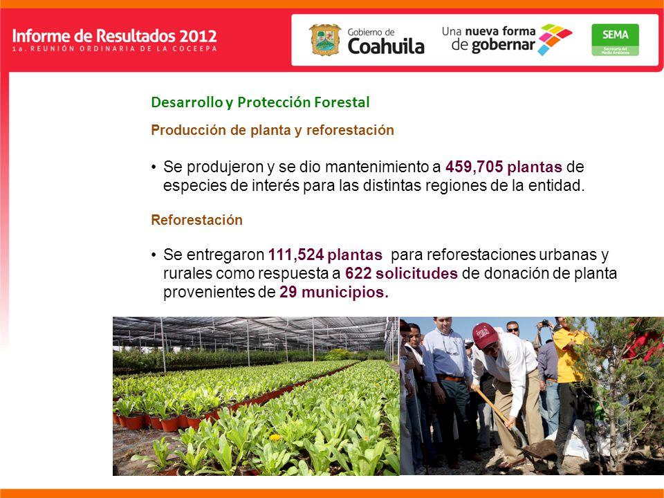 Desarrollo y Protección Forestal Producción de planta y reforestación Se produjeron y se dio mantenimiento a 459,705 plantas de especies de interés para las distintas regiones de la entidad.