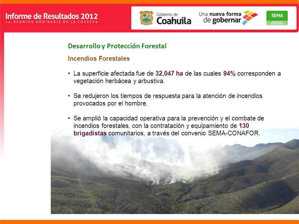Desarrollo y Protección Forestal Incendios Forestales La superficie afectada fue de 32,047 ha de las cuales 94% corresponden a vegetación herbácea y arbustiva.