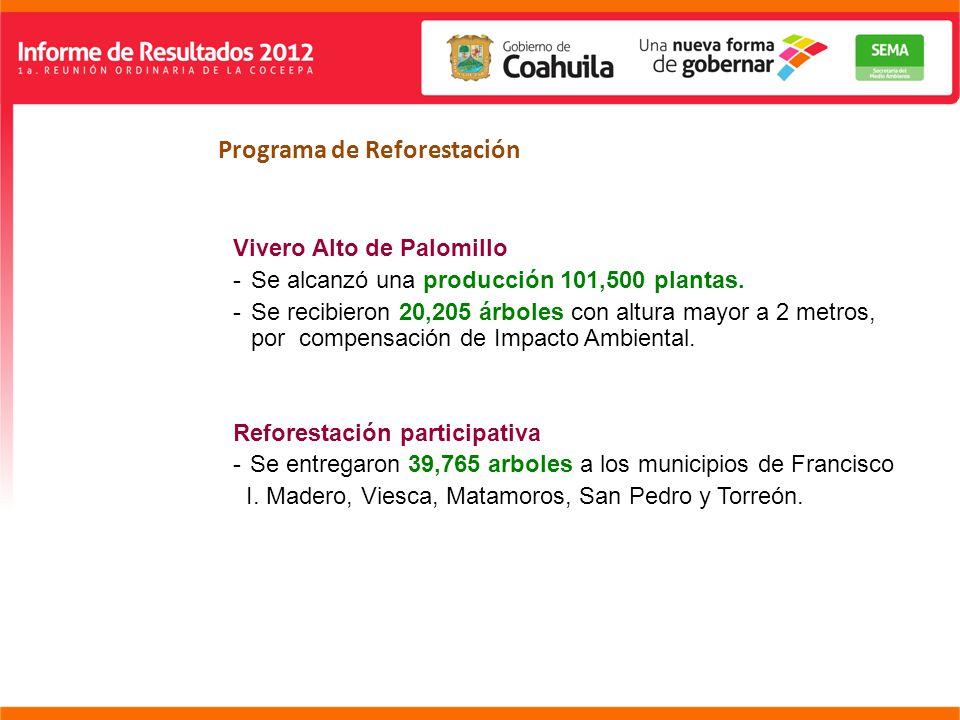 DIRECCIÓN GENERAL REGIÓN LAGUNA Programa de Reforestación Vivero Alto de Palomillo -Se alcanzó una producción 101,500 plantas.
