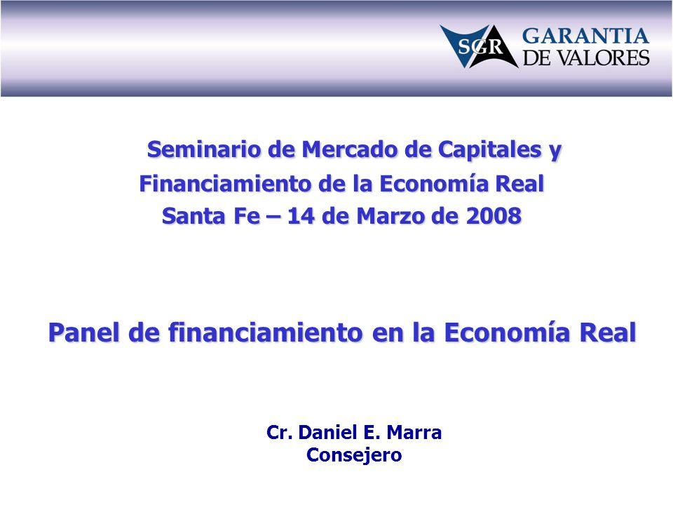 Seminario de Mercado de Capitales y Financiamiento de la Economía Real Santa Fe – 14 de Marzo de 2008 Panel de financiamiento en la Economía Real Cr.