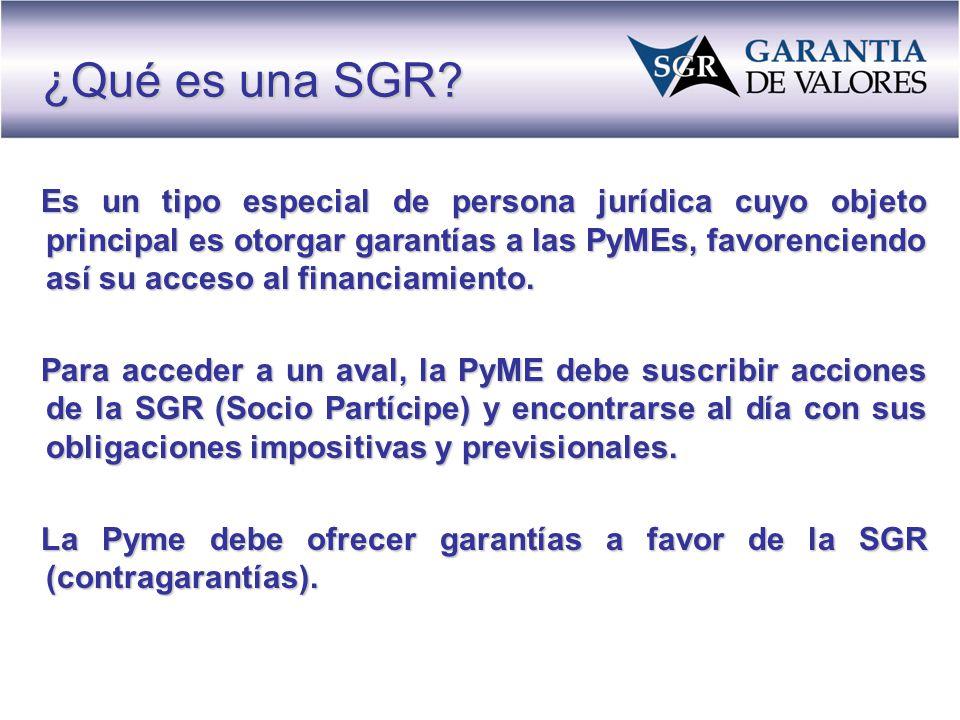 Es un tipo especial de persona jurídica cuyo objeto principal es otorgar garantías a las PyMEs, favorenciendo así su acceso al financiamiento.