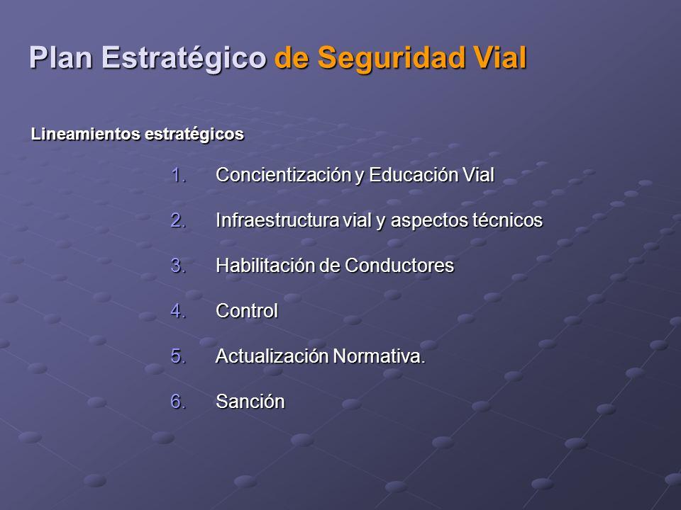 1.Concientización y Educación Vial 2.Infraestructura vial y aspectos técnicos 3.Habilitación de Conductores 4.Control 5.Actualización Normativa.