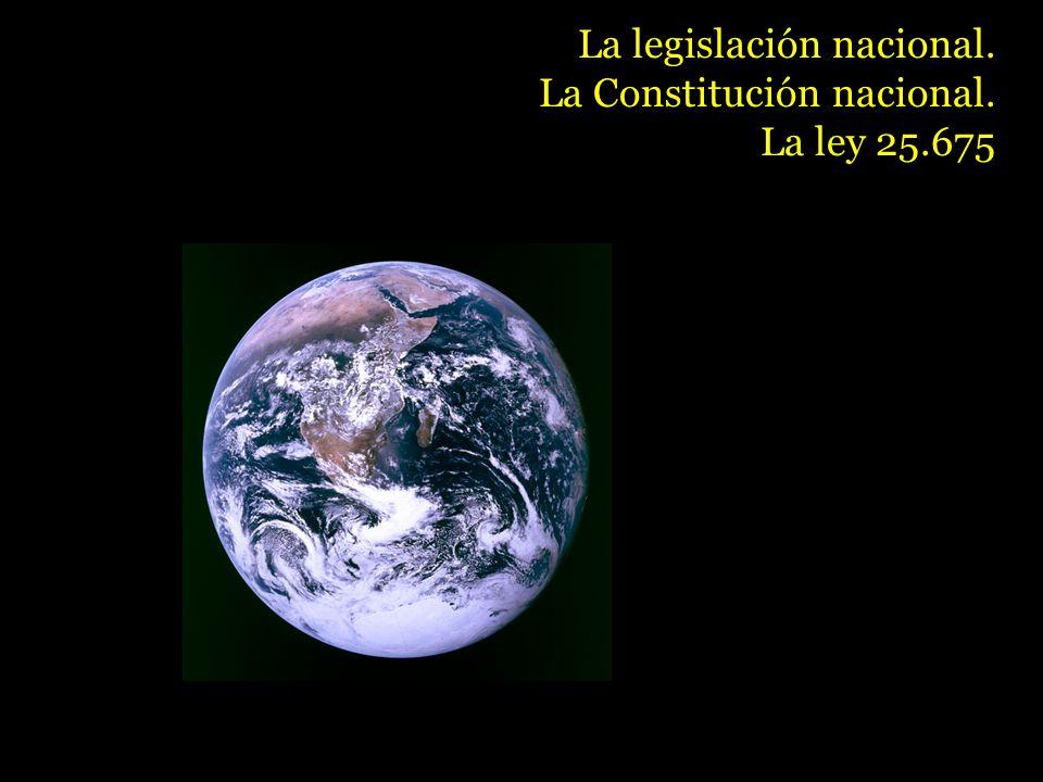 La legislación nacional. La Constitución nacional. La ley 25.675